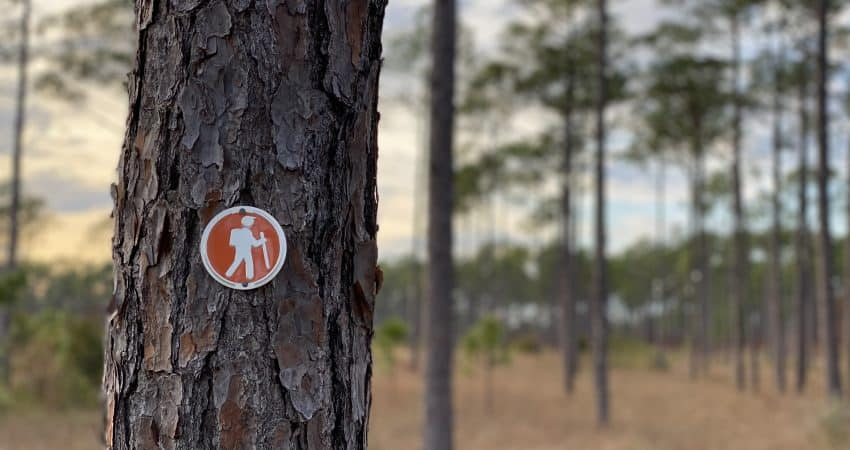 Patsy Pond Trail